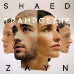 Download nhạc Trampoline (Single) chất lượng cao