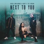 Next To You (Single) - Digital Farm Animals, Becky G, Rvssian | Tải nhạc trực tuyến