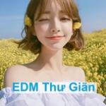 Tải nhạc mới EDM Thư Giãn (Phần 3) online