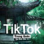 Tải bài hát Những Bài Hát TikTok Trung Quốc Hay Nhất (Vol. 1) hay nhất