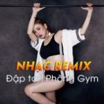 Tải nhạc online Nhạc Remix - Đập Tan Phòng Gym Mp3 mới