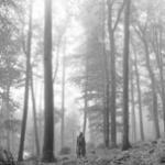 Download nhạc hay folklore (edited) mới