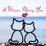 Tải nhạc miễn phí I Wanna Marry You - Backstreet Boys