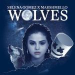 Tải nhạc online Wolves Mp3 miễn phí
