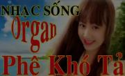 Liên Khúc Nhạc Sống Organ - Trữ Tình Không Lời   Tải nhạc miễn phí