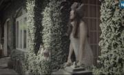 Hoa Tuyết   Download nhạc về máy
