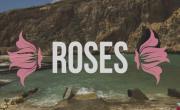 Tải nhạc trực tuyến Roses (Lyric Video) - The Chainsmokers, Rozes