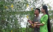 Tải nhạc online Đồng Tháp Quê Mình về điện thoại