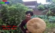 Vui Bốn Mùa (Quan Họ Bắc Ninh) | Download nhạc nhanh