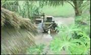 Xem video nhạc online Tình Cha - Trịnh Công Sơn