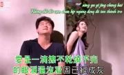 Thiên Hạ Hữu Tình Nhân (OST Thần Điêu Đại Hiệp 95) (MV Sub Việt) | Download video nhạc